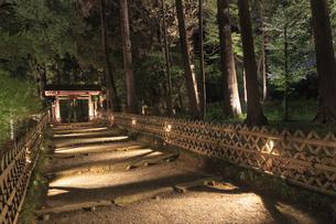 夜の芝前門の写真素材 [FYI03227349]