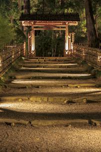 夜の芝前門の写真素材 [FYI03227354]