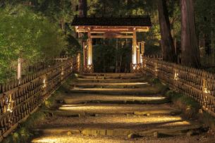 夜の芝前門の写真素材 [FYI03227366]