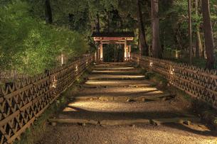 夜の芝前門の写真素材 [FYI03227369]