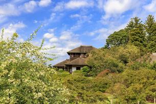萩まつりの偕楽園の写真素材 [FYI03227392]