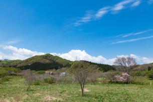 福島町の春の写真素材 [FYI03228300]