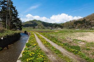福島町の春の写真素材 [FYI03228301]