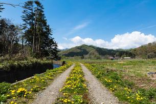福島町の春の写真素材 [FYI03228302]
