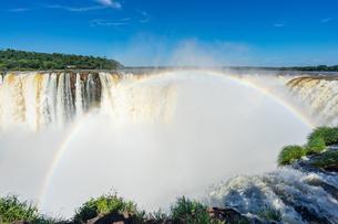 イグアスの滝、アルゼンチンの写真素材 [FYI03228617]