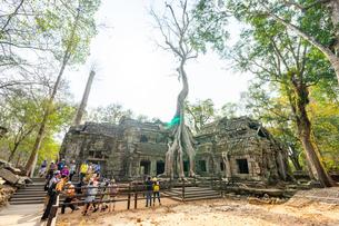 タ・プローム、カンボジアの写真素材 [FYI03228620]