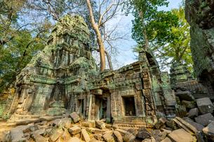 タ・プローム、カンボジアの写真素材 [FYI03228622]