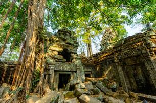 タ・プローム、カンボジアの写真素材 [FYI03228623]