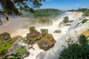 イグアスの滝、アルゼンチンの写真素材 [FYI03228624]