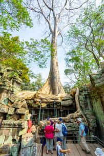 タ・プローム、カンボジアの写真素材 [FYI03228632]