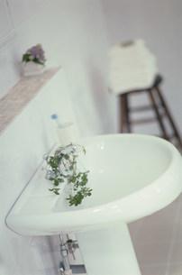 洗面所の写真素材 [FYI03228774]