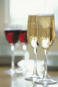 シャンパンと赤ワインの写真素材 [FYI03228809]