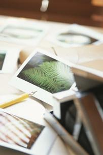 ポラロイド写真や万年筆の写真素材 [FYI03228818]