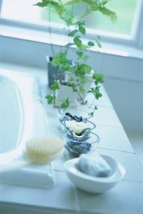 バスタブ脇の石鹸とブラシや植物の写真素材 [FYI03229172]