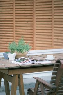 木のテーブルの上の鉢植えと本の写真素材 [FYI03229186]