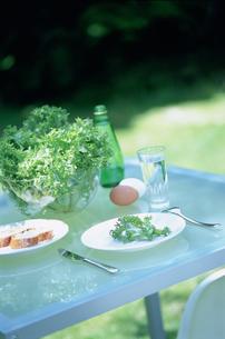 サラダやパンのあるガーデンテーブルの写真素材 [FYI03229187]