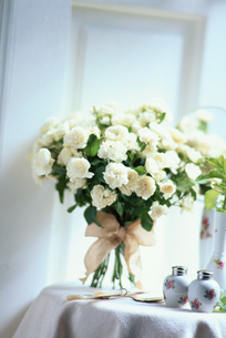 花の写真素材 [FYI03229874]