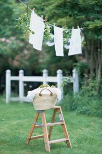 庭先の洗濯物と籠の写真素材 [FYI03229922]