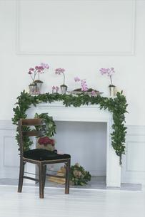 暖炉を飾る花の写真素材 [FYI03229970]