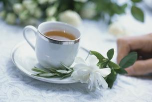 白いティーカップに花を添える手元の写真素材 [FYI03229994]