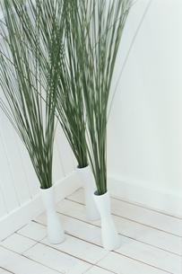 部屋のコーナー3つの花瓶にスチールグラスの写真素材 [FYI03230049]
