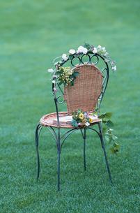 椅子に飾られた花々の写真素材 [FYI03230060]