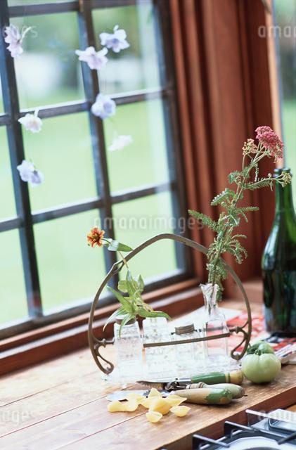 ビンに入った花の写真素材 [FYI03230080]