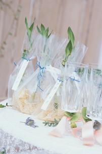 袋に入った植物とグラスの写真素材 [FYI03230091]