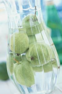 水差しの中の青リンゴの写真素材 [FYI03230129]