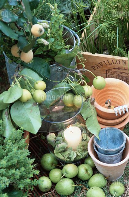 青リンゴやキャンドルの写真素材 [FYI03230131]