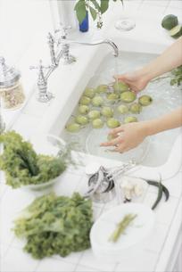 水の張ったシンクで果実を洗う手の写真素材 [FYI03230136]