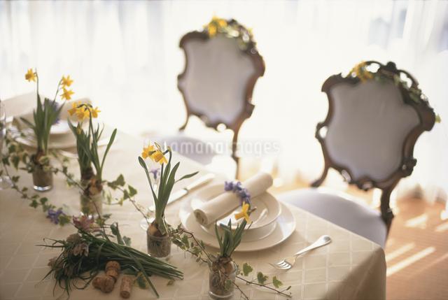 水仙の花を飾ったテーブルセッティングの写真素材 [FYI03230138]