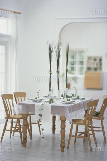 グリーンで飾ったダイニングテーブルの写真素材 [FYI03230141]