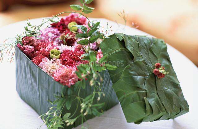 花びらをつめた葉で出来た箱の写真素材 [FYI03230144]