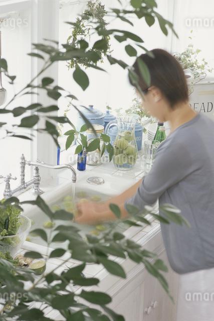 フルーツを洗う女性の写真素材 [FYI03230151]