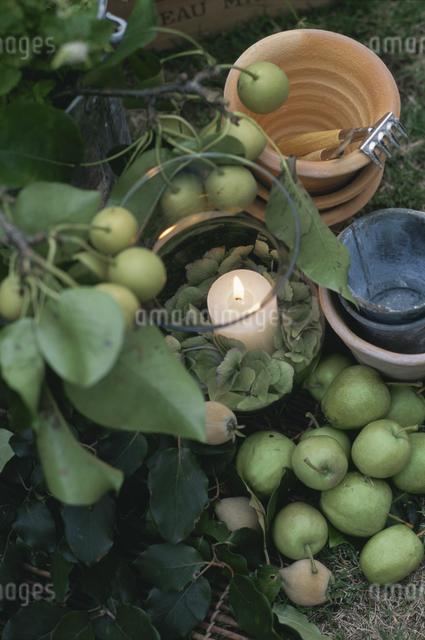 植木鉢とキャンドルの写真素材 [FYI03230161]