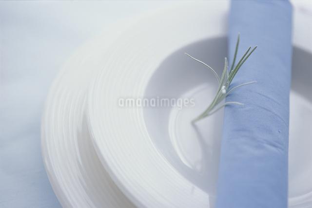 白皿の上の葉の写真素材 [FYI03230164]