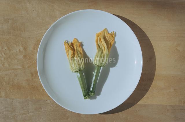 皿の上の野菜 ズッキーニの写真素材 [FYI03230200]
