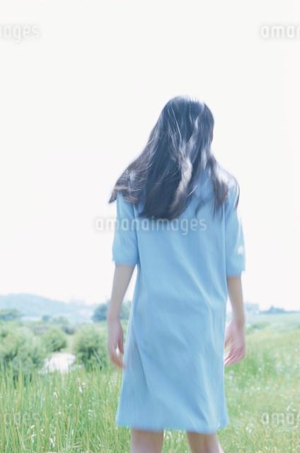 日本人女性の後ろ姿の写真素材 [FYI03230311]