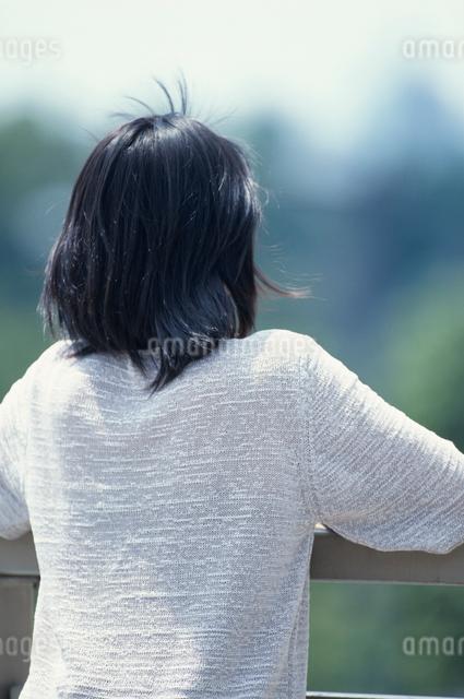 日本人女性の後ろ姿の写真素材 [FYI03230388]
