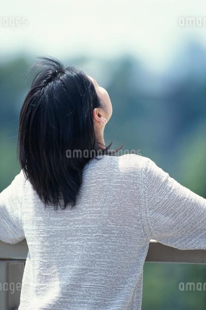 上方を見る日本人の女性の後ろ姿の写真素材 [FYI03230394]