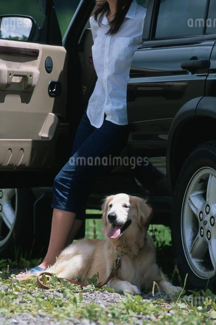 日本人女性と犬の写真素材 [FYI03230425]