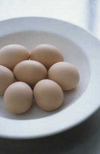 卵の殻と卵の写真素材 [FYI03230443]