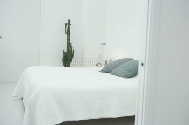 緑の枕のあるベッドルームの写真素材 [FYI03230450]