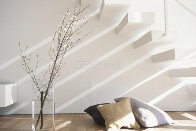 階段下の床に置いたクッションと花瓶に活けた木の写真素材 [FYI03230514]