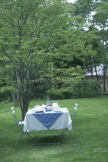 夏の庭のテーブルセッティングの写真素材 [FYI03230530]