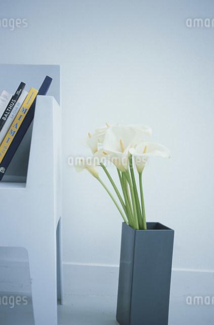 花束とイスに立掛けた本の写真素材 [FYI03230647]