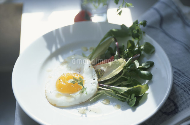 目玉焼きとリーフサラダをのせた白い皿の写真素材 [FYI03230702]