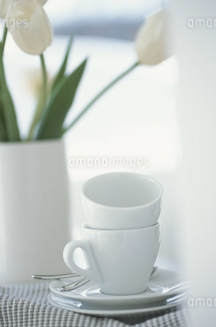 2脚の白いコーヒーカップと花瓶に活けたチューリップの写真素材 [FYI03230719]
