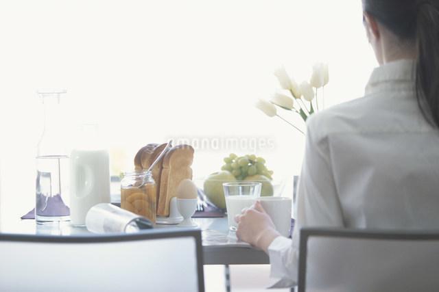 朝食を取る女性の後ろ姿の写真素材 [FYI03230731]